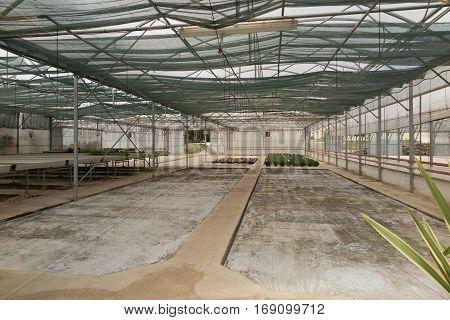 An Empty Greenhouse In A Garden Center