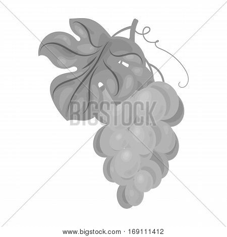 Bunch of yellow grapes icon in monochrome design isolated on white background. Wine production symbol stock vector illustration.