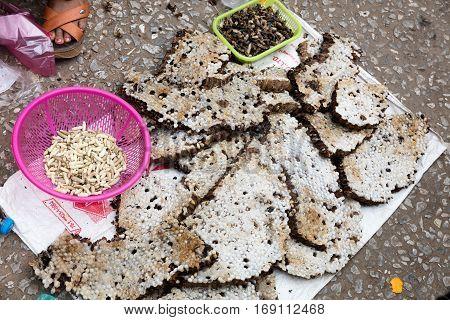 Wasp Larvae At Market