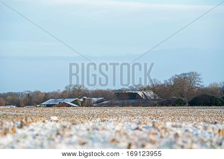 Frozen farmland in a rural dutch landscape.
