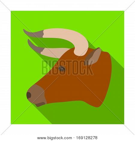 Head of bull icon in flat design isolated on white background. Rodeo symbol stock vector illustration.