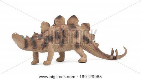 Stegosaurus dinosaur isolated on white background .