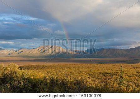 Rainbow over a scenic Denali National Park Landscape