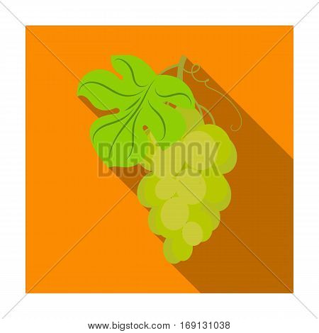 Bunch of yellow grapes icon in flat design isolated on white background. Wine production symbol stock vector illustration.