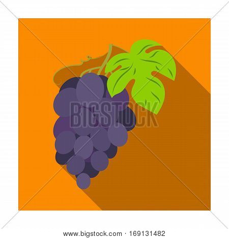 Bunch of grapes icon in flat design isolated on white background. Wine production symbol stock vector illustration.