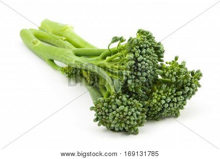 broccolini baby broccoli isolated on white .