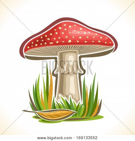 Vector logo red Toadstool Mushroom: cartoon still life with single toxic plant amanita muscaria and autumn grass, magic fly agaric mushroom on nature outdoors, icon poisonous toadstool organic fungus.