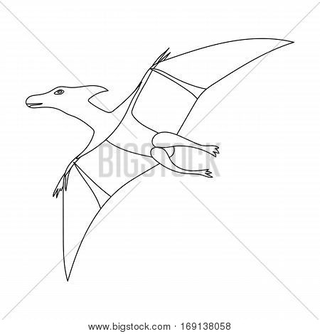 Dinosaur Pterodactyloidea icon in outline design isolated on white background. Dinosaurs and prehistoric symbol stock vector illustration.