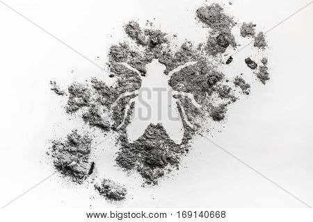 Fly insect shape silhouette annoying and irritating bug made of dust ash dirt