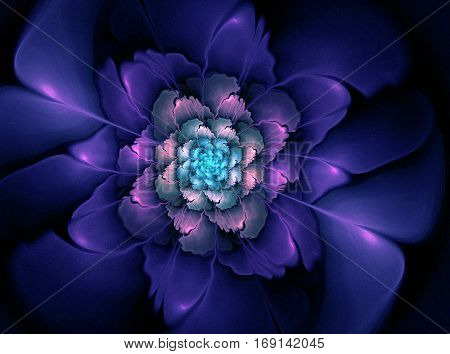 Abstract Flower Fractal Shape
