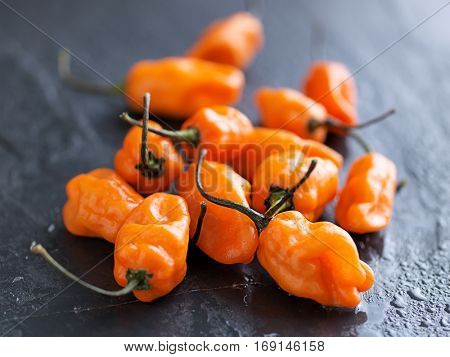 pile of spicy habanero peppers