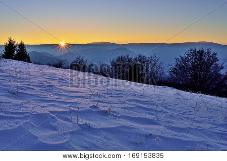 Landscape with trees and meadow. Winter inversion in Slovakia. Freeze land. Scenery at sunset.
