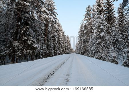 Beautiful winter landscape- mountain road in pine forest covered with snow
