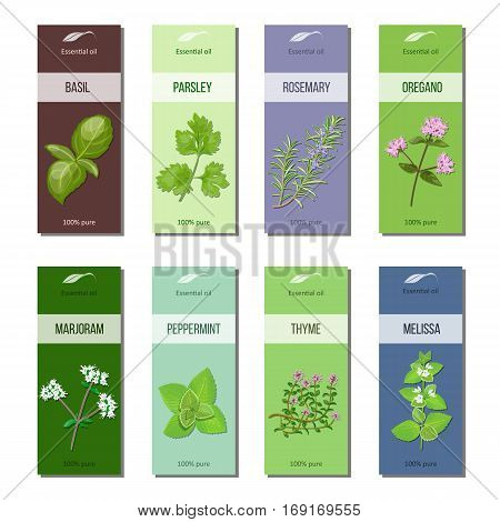 Essential oil labels set. Basil, parsley, rosemary, oregano, marjoram, peppermint, melissa, thyme 8 stripes collection For cosmetics perfume health care products aromatherapy