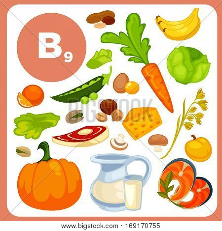 Set of food with vitamin B12. Ingredients for health: banana, fish, nuts, beef, carrot, egg, milk, pumpkin, salad. Healthy nutrition, diet with folic acid sources. Vector icons in cartoon design