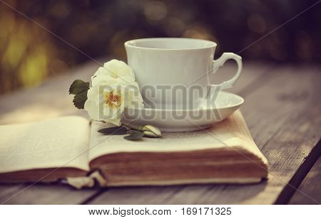 White tea cup with a flowers of dogrose on an open book