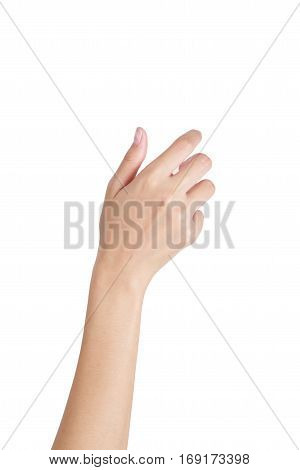 Woman's hand holding something empty back side isolated on white background.