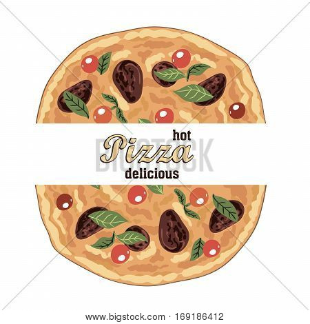 hot delicious Italian pizza and ingredients. color vector illustration