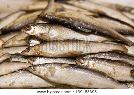 Raw smelt fish in the store like background