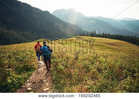 Rearview of two young men wearing backpacks and carrying trekking poles walking down a trail while hiking in the wilderness