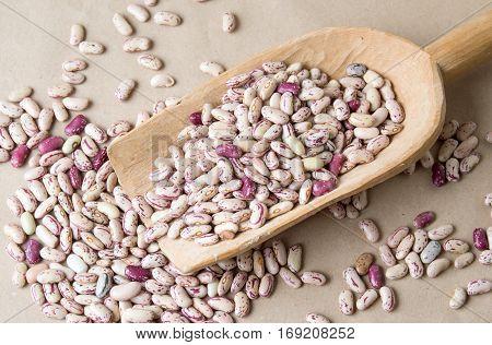 Colorful Borlotti Beans In Wooden Spoon