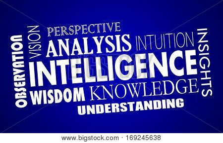 Intelligence Business Knowledge Information Words 3d Illustration