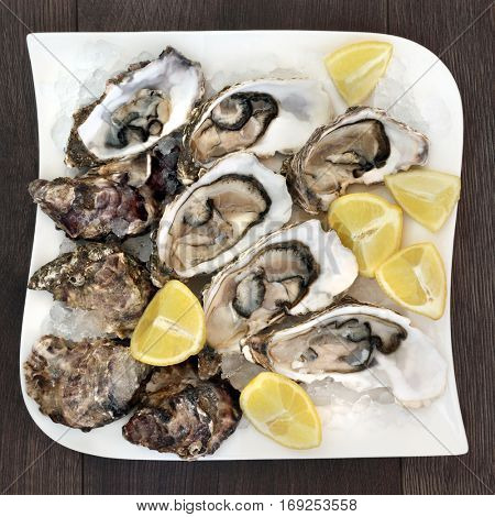 Fresh oysters on crushed ice with lemon fruit on a square porcelain plate on old oak background.