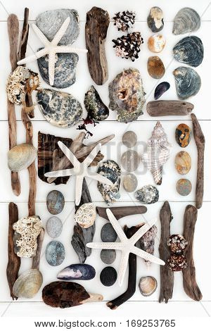 Seashell, driftwood, rock and seaweed natural objects creating an abstract collage on white wood background.