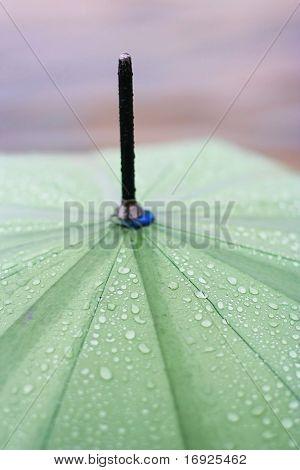 green umbrella with rain drops