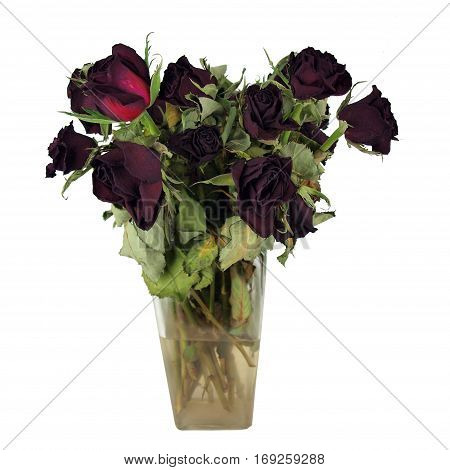 a bouquet of dead red roses in a clear glass vase