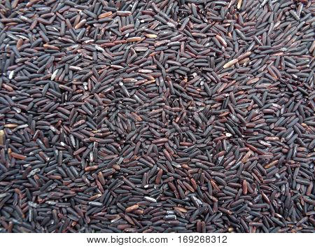 Uncooked Dark Violet Color Rice-berry Rice, Raw Rice, Background
