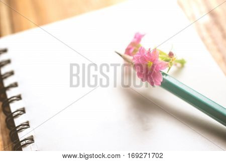 Close Up Pink Flower , Pencil And Notebook On Wood Table.