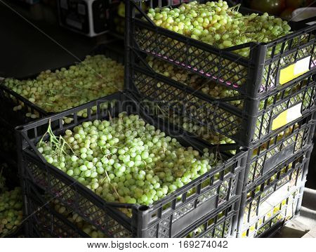 Fresh grapes in plastic crate on market
