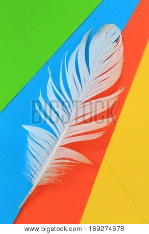 Image of white feather on colorful background