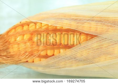 Close up of fresh corn cobs on table