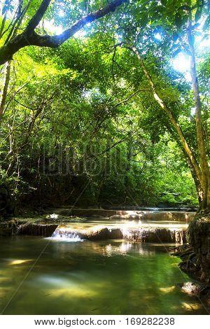 Forest Erawan and stream fresh with tree in Kanchanaburi Thailand