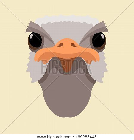 ostrich head  vector illustration style Flat front