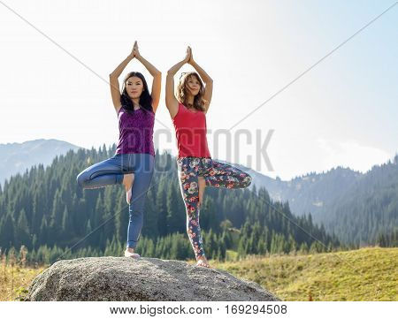 Two young women doing yoga on a rock on a background of mountains