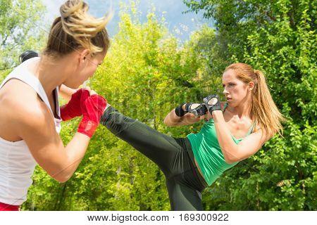 Taebo Side Kick And Guard