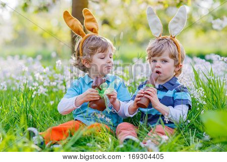 Two little kid boys playing together with chocolate bunny. Children, twins making Easter egg hunt and wearing bunny ears. Friends having fun outdoors on sunny day.