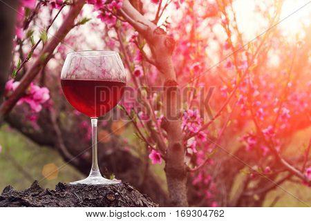 Wineglass With Red Wine At The Peach Tree Garden