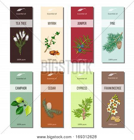 Essential oil labels set. Tea tree, myrrh, juniper, pine , cinnamon, camphor, cedar, cypress, frankincense 8 stripes collection For cosmetics perfume health care products aromatherapy