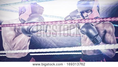 Boxer performing upright stance against different cords on black background