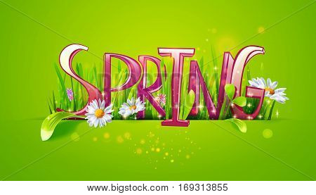 Spring word. Letters made with camomile flowers and green grass on green background. Floral banner. Vector illustration