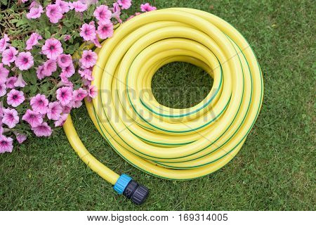 Yellow plastic hose-pipe on the grass with coupling