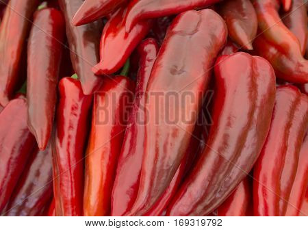 Heap of ripe big red peppers at a street market. A large number of red peppers in a pile. A special variety of red peppers