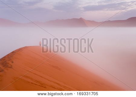 people walking in the morning to the top of Dune 45, Sossusvlei,