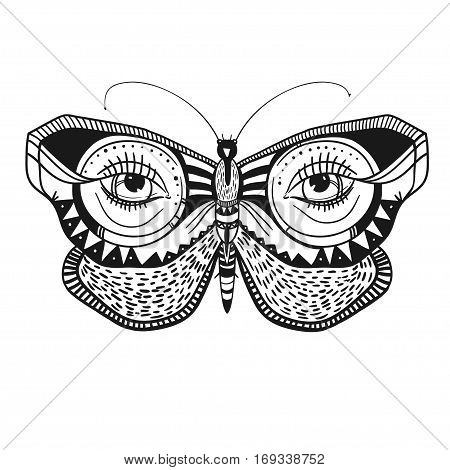 mysterious butterfly with decorative ornaments, vector illustration, beautiful butterfly isolated on white