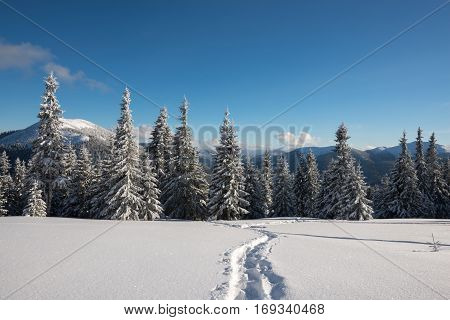 The trail through the virgin snow on alpine meadow on the background of colorful sky. Magic adventure in the winter mountains.