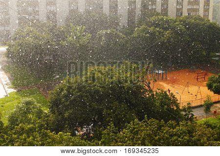 Summer Rain in Brasília the Brasilian Capital